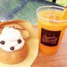 雄川の滝遊歩道から徒歩0分!コンテナカフェ「aqua base cafe」が移転オープン