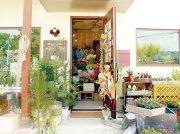 【移転】母の日にお勧め!観葉植物・ドライフラワーなど豊富にそろう「花と雑貨の店 お花のひだか」フラワー教室も開催