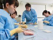 湘南鎌倉人工関節センターで、将来の医療従事者につなげる体験開催
