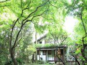 新緑に癒やされよう!森を楽しむカフェ2019 【吉祥寺・善福寺・練馬ほか】