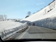 【岩手県八幡平】迫力満点☆雪の回廊【アスピーテライン】