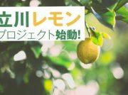 5/4・5「立川とびしまレモン」商品をIKEA立川店前で販売