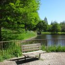 もうすぐスイレンが見頃!八千代市の萱田地区公園