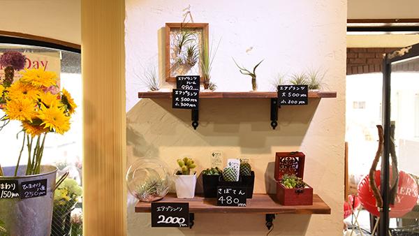 【開店】フローリストJIN、柏市役所通りにスタイリッシュな生花店