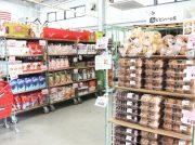 コストコが岡山に⁉︎ コスパだけじゃない、「コストレ」の魅力とは【浅口市鴨方町】