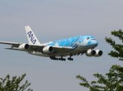 大空を飛ぶ巨大ウミガメ!?オススメアプリでA380を見に行こう@成田