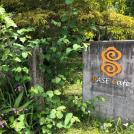【曽於市末吉】ドライブコースにもお勧め、新緑に癒やされる「BASE Cafe」でランチを満喫!