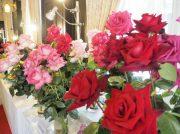 バラ好きも写真好きも集まれ!萬翠荘のバラ展@松山市