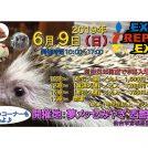 6/9(日)★EXOTIC REPTILE EXPO
