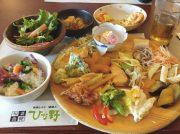 【閉店】平日限定!ランチもディナーも1450円で食べ放題! 箕面「ひな野」