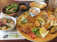 平日限定!ランチもディナーも1450円で食べ放題! 箕面「ひな野」