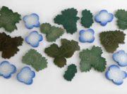 【見る・聴く】「石本藤雄展ーマリメッコの花から陶の実へー」開催