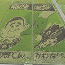【6月30日】南九州市で田んぼアート制作に参加しよう!参加無料、図案は当日までのお楽しみ