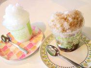 【宇都宮】甘くないかき氷!本格コーヒーをかき氷で食べられる「オアシスカフェ」