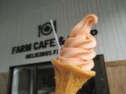 幻のデリシャストマトのソフトクリームを食べてみた!【大崎市鹿島台】