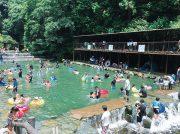 【夏休み】海・河川で自然体験!子育てママが厳選した東海地区ネイチャースポットはこの3つ!