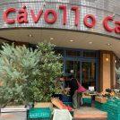 【たまプラーザ】無農薬野菜の青葉グリーンファーム×CavolloCafe