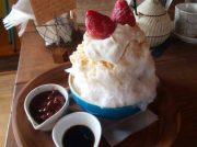 【白楽】こだわりのかき氷「雫カフェ」