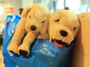 【船橋】IKEA TOKYO-BAYで愛犬家の必須アイテム「イケゴル」をゲットせよ