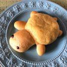 仙台うみの杜水族館限定!ウミガメのメロンパンが可愛すぎる!