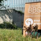 【葛西臨海公園】手ぶらでOK!プレミアムな「SORAMIDO BBQ(ソラミドバーベキュー)」のお肉が美味しすぎる!