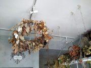 夏におすすめ!ドライフラワー atelier flocorir(アトリエ フロコリール)西武柳沢