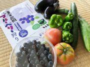 【日置市】20種以上のブルーベリーを無農薬栽培!摘みたての味にみんな大喜び「東峯農園」