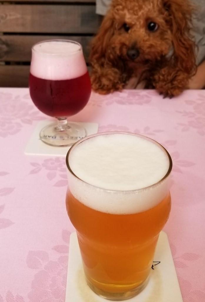 lou&beer