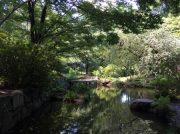 【東小金井】「次郎物語」が生まれた場所「浴恩館公園」を訪ねて