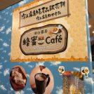 【霧島】子連れ霧島!雨の日を120%楽しむ「蜂蜜Cafe」オープン!