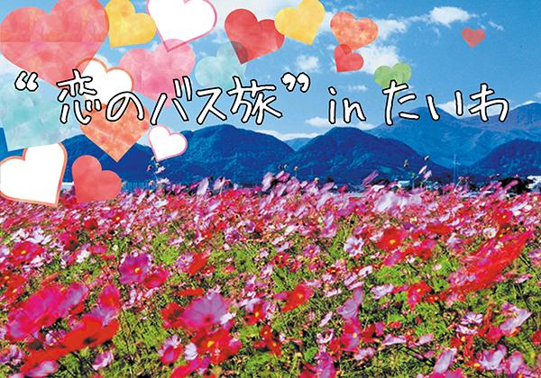 taiwa_koibus_title