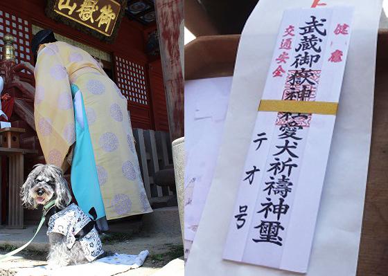 ワンコ連れOKの神社