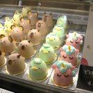 移転オープン・「カトルセゾン菓子夢」が衣山へ。どうぶつさんケーキ、もう食べた?