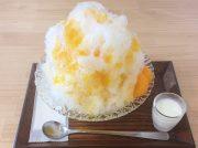 あの有名店出身の絶品かき氷!『mizoreya』@京成大久保