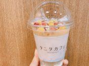 【葛飾区亀有】SPORTSMARIOとタニタカフェがコラボ!