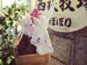 【閉店】西荻窪「アイスクリーム工房 ぼぼり」が2019年10月27日(日)に閉店