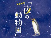 8月10・14・17・24・31日は「夜の動物園」☆ とべZOOの土曜夜祭りも初開催