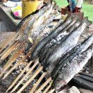 清水公園キャンプ場で「マス釣り」体験!釣って塩焼き食べてきた!@野田