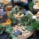 野菜 バラマーケット