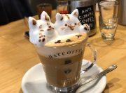 【浅草・蔵前】本格ラテアートのカフェ「HAT COFFEE(ハットコーヒー)」で愛犬を描いてもらいました!