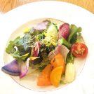 【六本木】美味しい朝採り野菜付きお得なランチはいかが?秋のワインフェスも!「ぶどう酒食堂さくら」