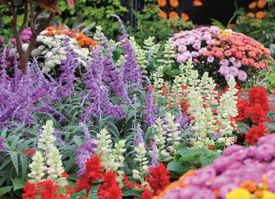 flowerpark_1560