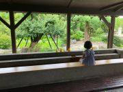 【霧島】庭園を眺めながらの足湯、無料の着付け体験も!日当山温泉郷「日当山西郷どん村」