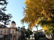 【イベント】芸術の秋に旧岩崎邸庭園の魅力満載