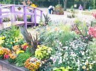【壬生町】癒しと驚きのお花の美術館!?とちぎわんぱく公園