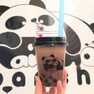 もっちもちタピオカとパンダがかわいい「pancha」が大須にオープン!