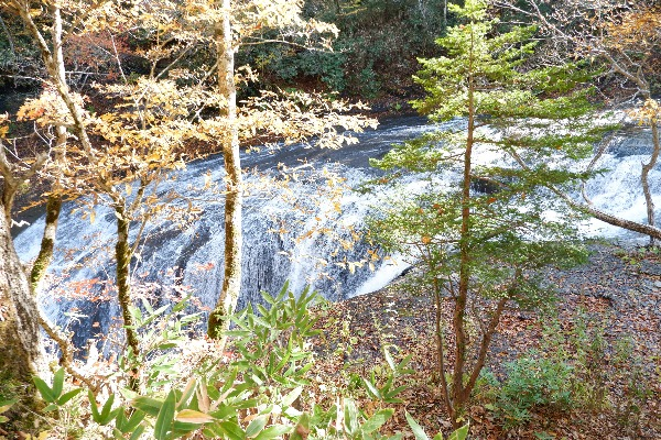 白扇の滝と紅葉の調和