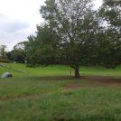 【岸根公園】これからの季節にぴったり駅近の岸根公園