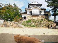 10年ぶりに訪れて再発見!備中松山城の5つの魅力とは?
