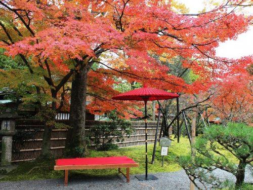 web用松花堂庭園